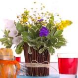 Bohatá kvetinová výzdoba do interiéru – ako na to?