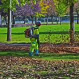Ako sa starať o trávnik na jeseň?