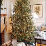 História vianočného stromčeka + VIDEO s vianočnými inšpiráciami